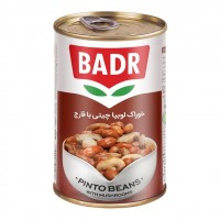 Iranian's  Chiti canned beans with 420 g mushroom sauce