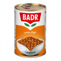 Iranian's  420 g lentil canned food